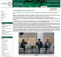 miniatura sito screenshot università mediterranea